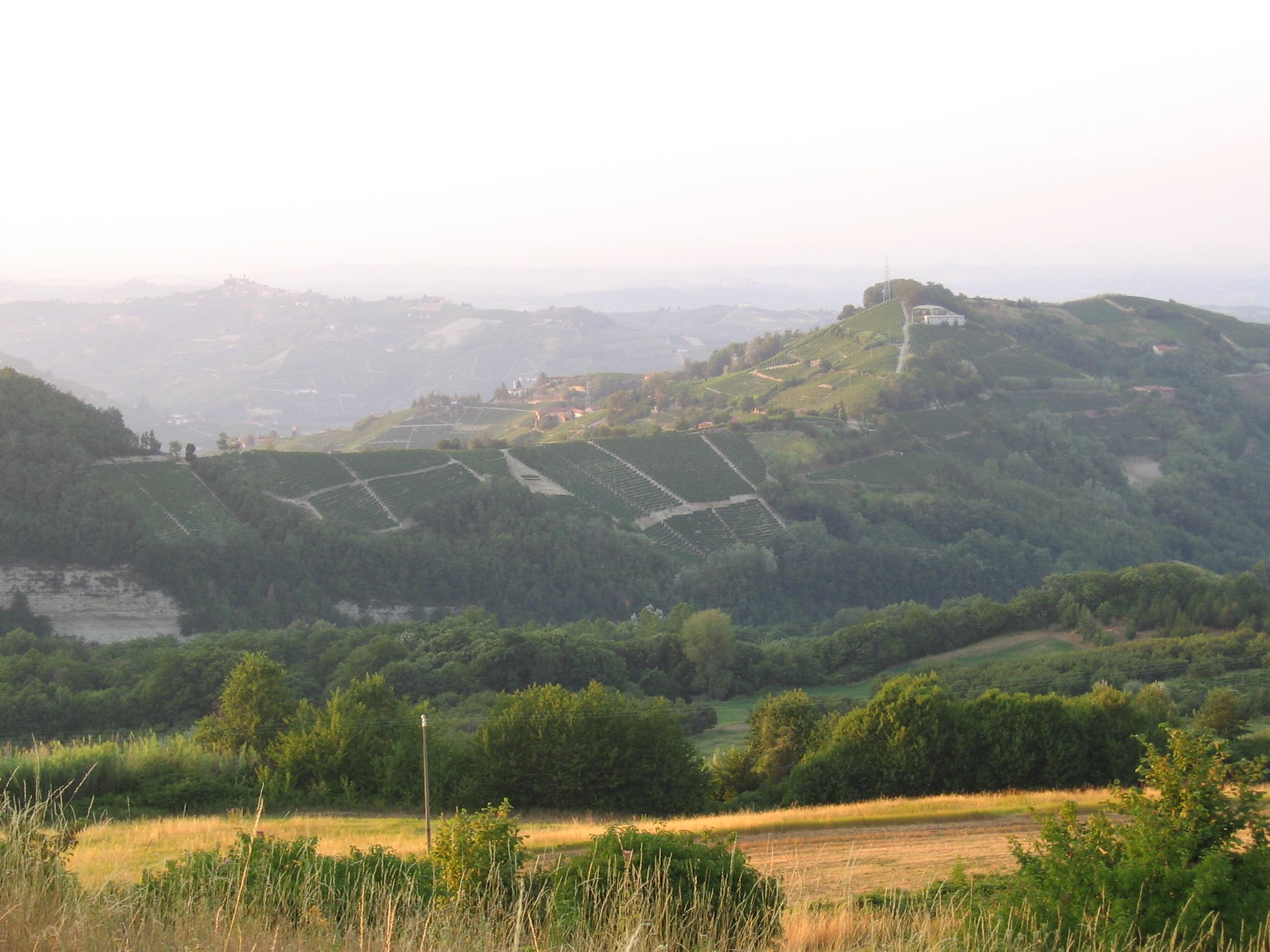 landschap in oostelijk Langhe