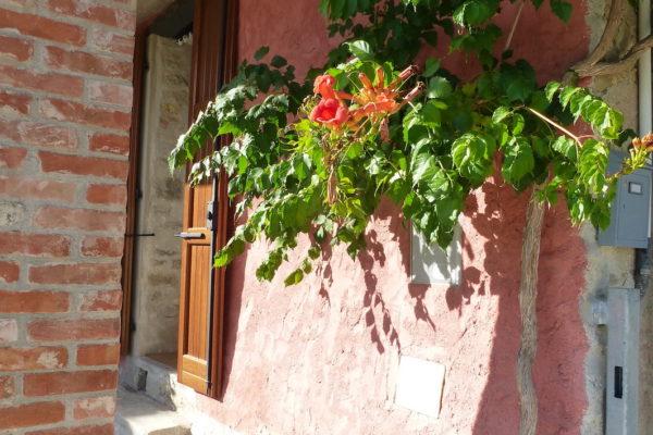 bloemen la casa vecchia