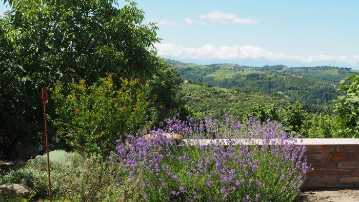 La Casa Vecchia lavendel en uitzicht